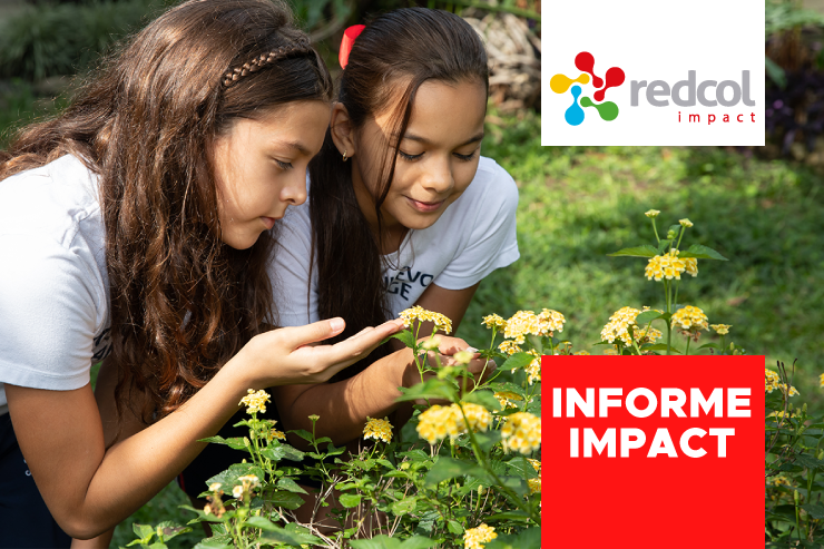 Informe Impact 2019